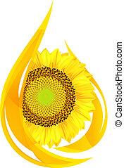 óleo, sunflower., oil., gota, stylized, unflower