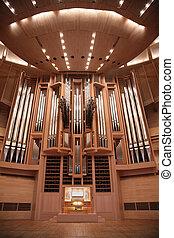 órgano, en, sala de conciertos