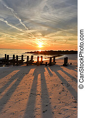 ö, kaninskinn, strand, sunset.
