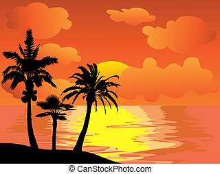 ö, palm, solnedgång, träd