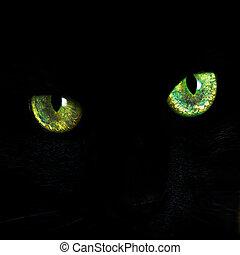 ögon, av, a, svart katt