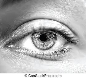 ögon, vektor, macro., grå, kvinnlig
