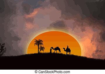 öken, solnedgång, sahara
