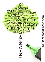 ökológia, fogalom, alatt, a, alakít, közül, egy, fa