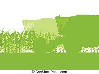 ökológia, szerves, aratógép, élelmiszer, gabonaszem, zöld, ősz, mező, vektor, kartell, vidéki, elvont, aratás
