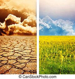 ökológiai, csapás