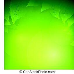 ökologie, blatt, transparent, steigung, abstrakt, grüner hintergrund, begriffe