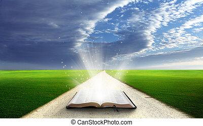 öppna, bibel, fält