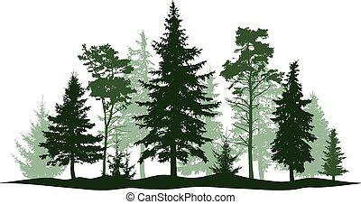 örökzöld, illustration., isolated., fa, elszigetelt, bitófák, liget, vektor, fasor, sóvárog, fa., karácsony, táj, erdő