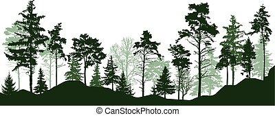 örökzöld, toboztermő fa, árnykép, fa., ábra, liget, erdő, vektor, zöld erdő, alley.