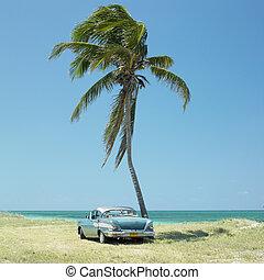 öreg, autó, playa, del, észt ember, havanna, tartomány, kuba