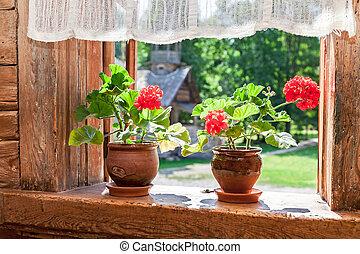 öreg, faház, napos, muskátli, ablak, vidéki, menstruáció, nap, piros