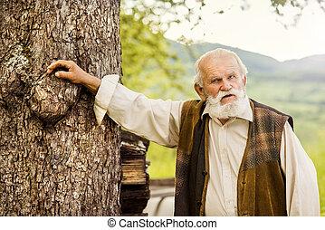 öreg, farmer, képben látható, a, kaszáló