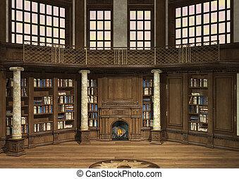 öreg, könyvtár