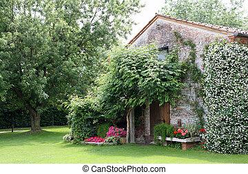öreg, kert, épület, jázmin, vidéki, menstruáció