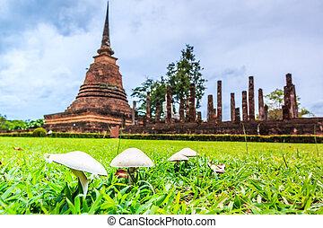 öreg, sukhothai, liget, történelmi, thaiföld, város