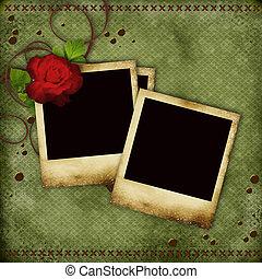 öreg, szüret, fénykép, piros rózsa, keret, kártya