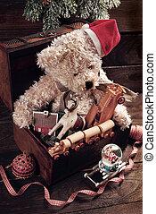 öreg, szüret, kincs, fiú, láda, apró, karácsony