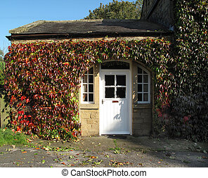 öreg, villaház, befedett, alatt, ősz, repkény