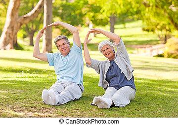 öregedő összekapcsol, cselekedet, -eik, kifeszít, a parkban