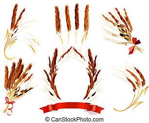 örn, vektor, wheat., illustration.