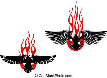 örnar, stam, svart, flammor