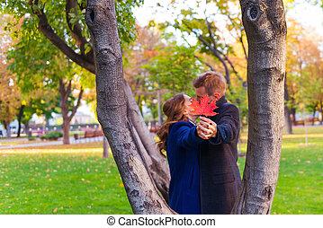 összekapcsol megcsókol, közel, a, fa