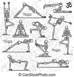 öva, yoga, skelett