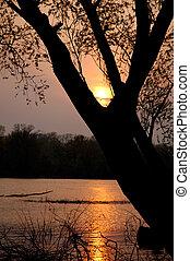 över, flod, solnedgång