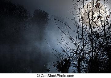 över, måne, flod, fyllda, dimmig