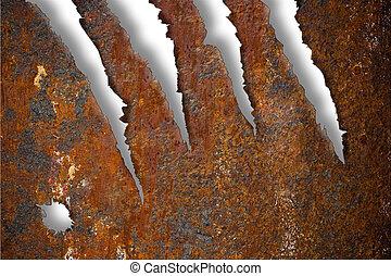 över, sönderrivet, metall, struktur, rostig, bakgrund, vit