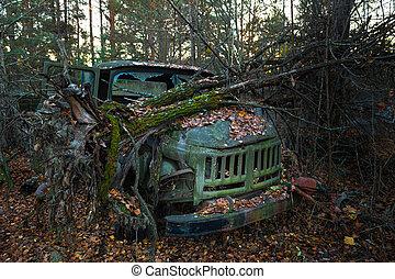 övergiven, träd, utanför, lastbil, fallen, vänster