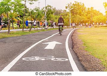 övning, med, cykel, in, publik parkera, frilufts reko kille
