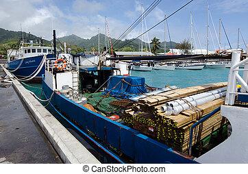 ø, -, rarotonga, kok øer, avatiu, havn