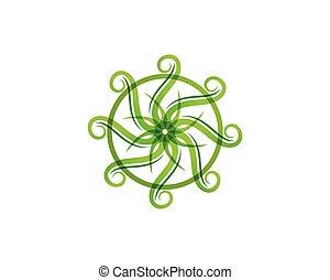økologi, blad, natur, element, gå, vektor, grønne, ikon