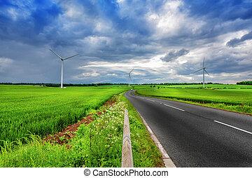økologiske, land