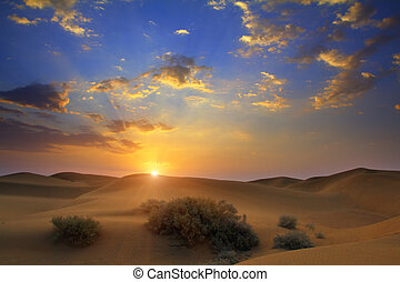 ørken, solopgang