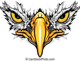 ørn, øjne, og, beak, vektor, illustration