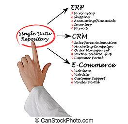 único, dados, repositório