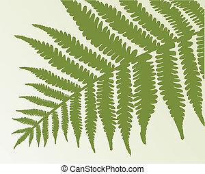 único, fern, frond., isole, objeto