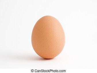 único, ovo, branco