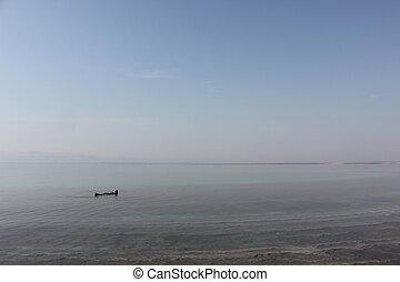 úszó, dead tenger