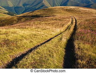 út, fordíts, a, távoli, hegyek