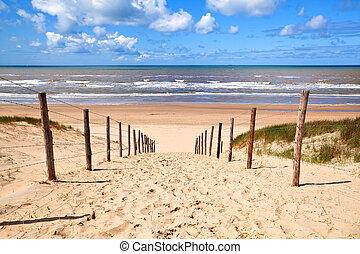 út, fordíts, sandy tengerpart, által, északi-tenger