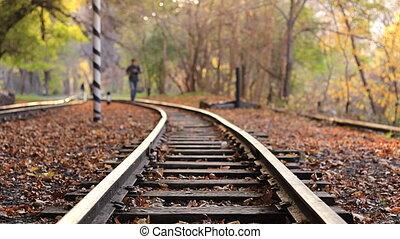 útvonal, évad, ősz, kocogás, erdő, vasút, ember
