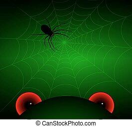 übel, augenpaar, und, a, spinne, auf, der, web