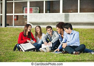 ülés, diákok, egyetem, együtt, fű, egyetem területe