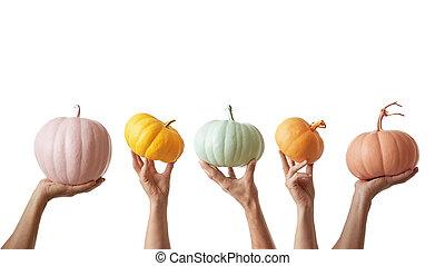 ünnep, művészet, kártya, alapján, színes, hajó, festett, sütőtök, holded, által, kezezés on, egy, fehér, háttér.