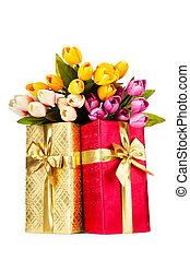 ünneplés, fogalom, -, tehetség ökölvívás, és, tulipán, menstruáció
