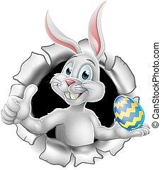 üregi nyúl, tojás, feláll, lapozgat, birtok, easter nyuszi